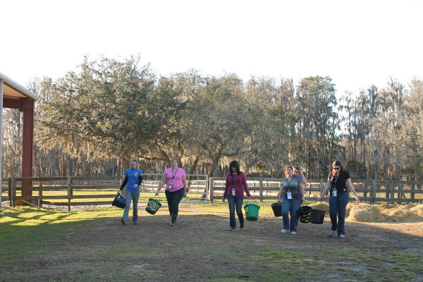 Women carry manure buckets in activity
