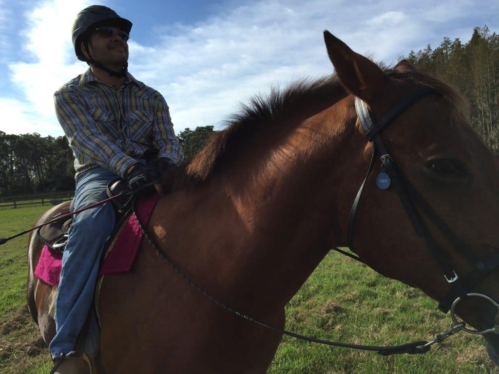 635845790461205427-horse-002_299415_ver1.0