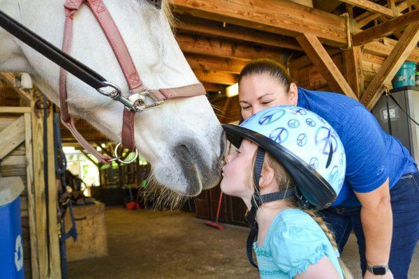 Loving on the Horses